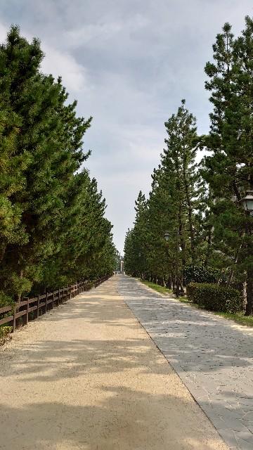 f:id:kiha-gojusan-hyakusan:20200811000234j:image