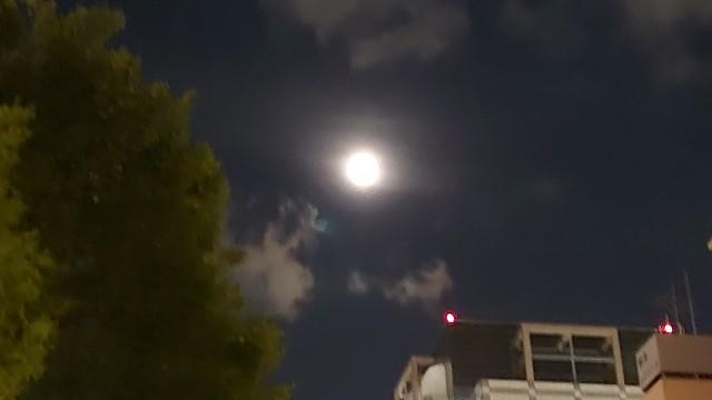 f:id:kiha-gojusan-hyakusan:20200827192759j:image