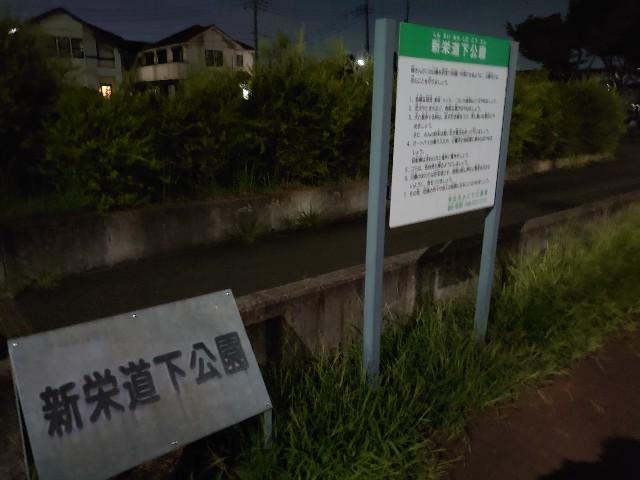 f:id:kiha-gojusan-hyakusan:20200829224821j:image
