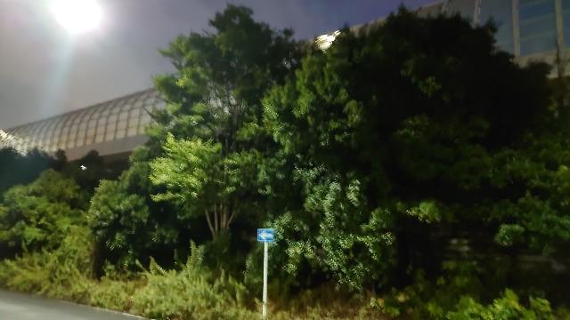 f:id:kiha-gojusan-hyakusan:20200906225422j:image