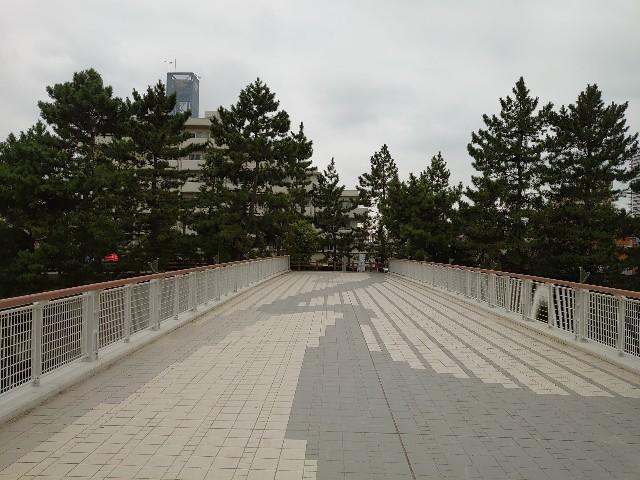 f:id:kiha-gojusan-hyakusan:20200913212522j:image