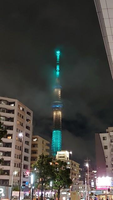 f:id:kiha-gojusan-hyakusan:20200926203812j:image
