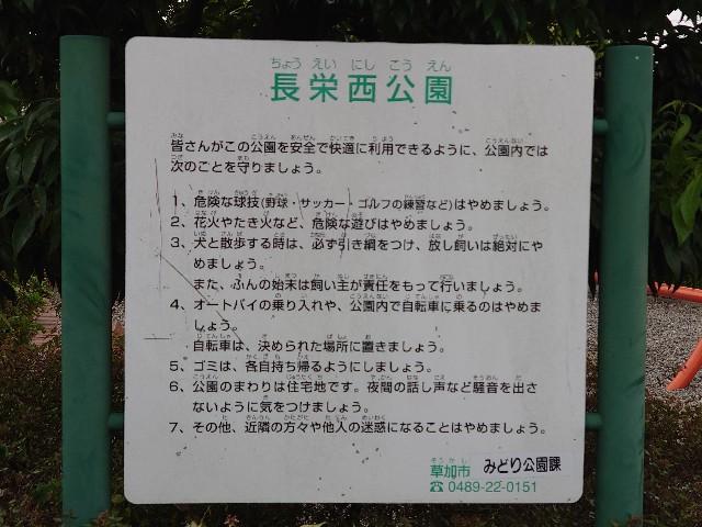 f:id:kiha-gojusan-hyakusan:20201012002452j:image