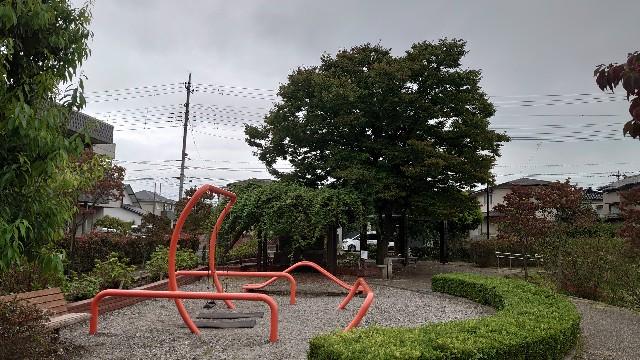 f:id:kiha-gojusan-hyakusan:20201012002509j:image