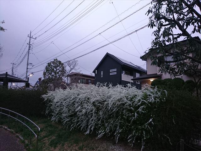 f:id:kiha-gojusan-hyakusan:20201012004505j:plain
