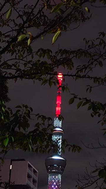 f:id:kiha-gojusan-hyakusan:20201017002800j:image