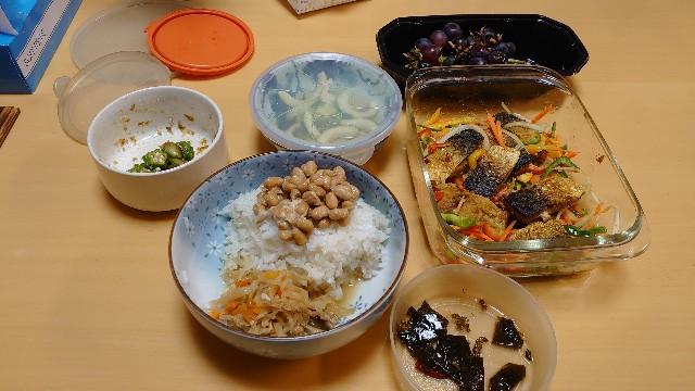 f:id:kiha-gojusan-hyakusan:20201022011828j:image