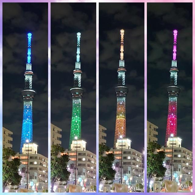 f:id:kiha-gojusan-hyakusan:20201026224507j:image