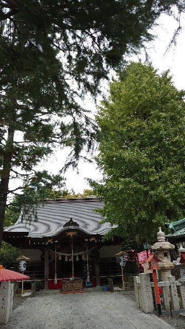 f:id:kiha-gojusan-hyakusan:20201101234719j:image