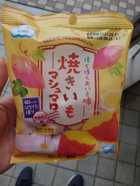 f:id:kiha-gojusan-hyakusan:20201102004814j:image