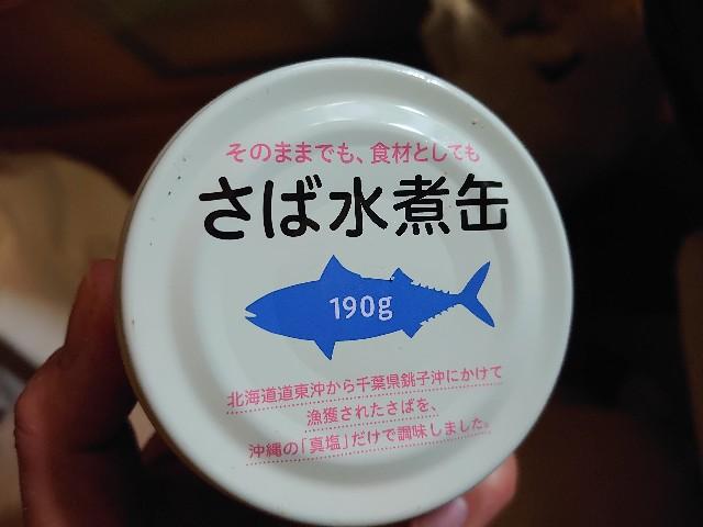 f:id:kiha-gojusan-hyakusan:20201103031914j:image