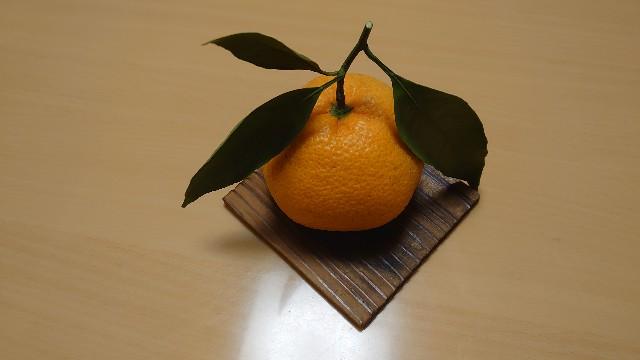 f:id:kiha-gojusan-hyakusan:20201115150452j:image
