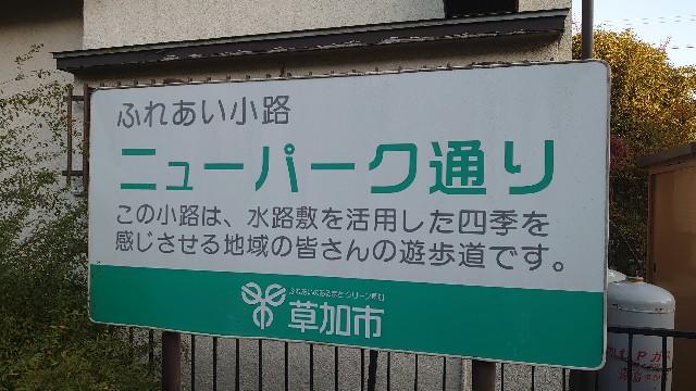 f:id:kiha-gojusan-hyakusan:20201115202924j:image
