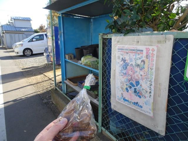 f:id:kiha-gojusan-hyakusan:20201121200434j:image