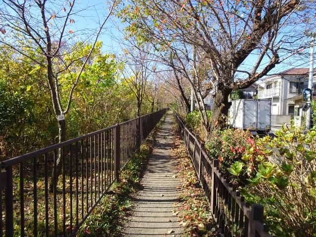 f:id:kiha-gojusan-hyakusan:20201122000656j:image