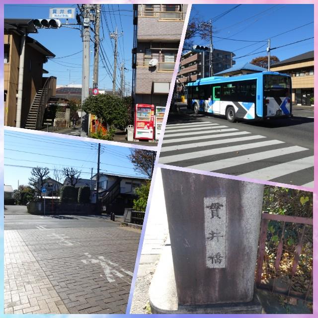 f:id:kiha-gojusan-hyakusan:20201122000846j:image