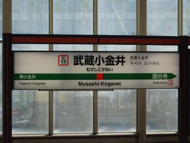 f:id:kiha-gojusan-hyakusan:20201122010553j:image