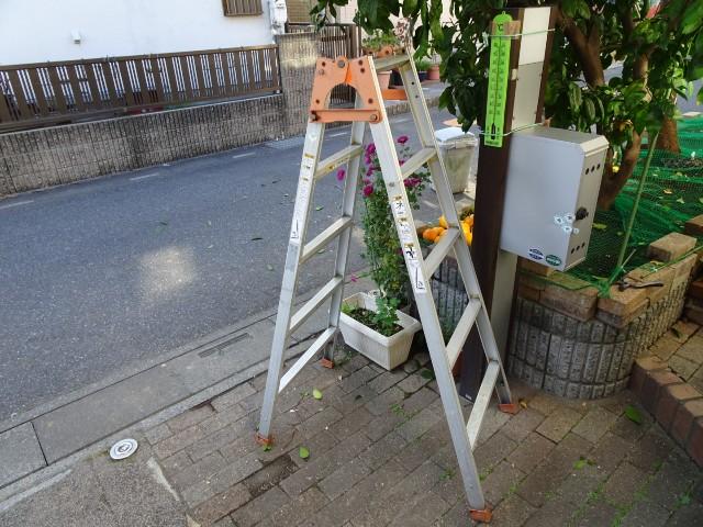 f:id:kiha-gojusan-hyakusan:20201122182948j:image
