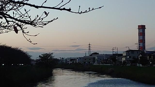 f:id:kiha-gojusan-hyakusan:20201123045403j:image