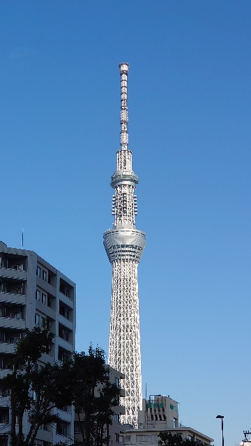 f:id:kiha-gojusan-hyakusan:20201130102202j:image