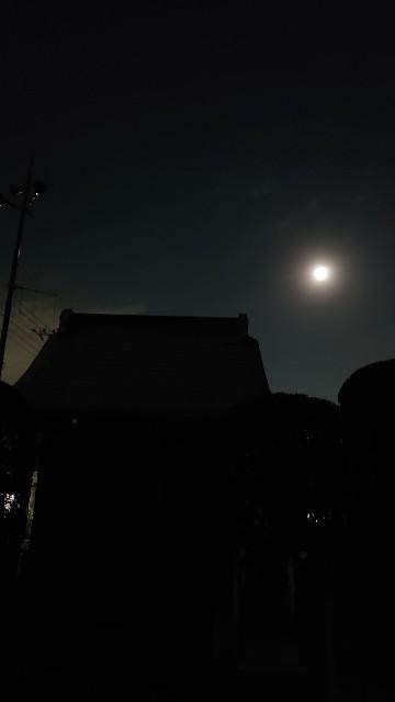 f:id:kiha-gojusan-hyakusan:20201203235219j:image