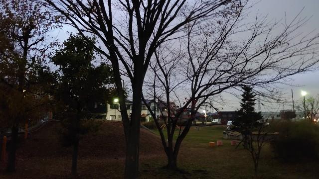 f:id:kiha-gojusan-hyakusan:20201205183657j:image