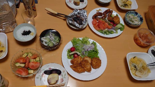 f:id:kiha-gojusan-hyakusan:20201226012512j:image