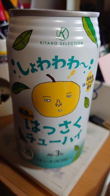 f:id:kiha-gojusan-hyakusan:20201226030406j:image