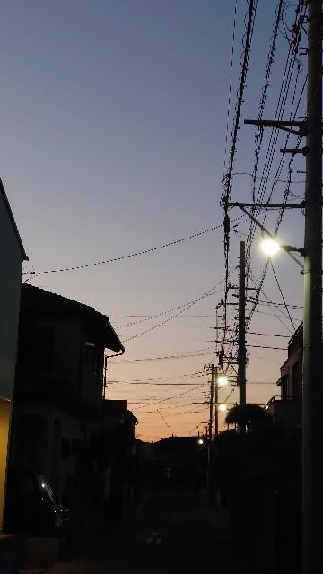 f:id:kiha-gojusan-hyakusan:20201226204842j:image