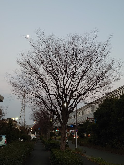 f:id:kiha-gojusan-hyakusan:20201227191333j:image