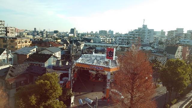 f:id:kiha-gojusan-hyakusan:20201229123848j:image