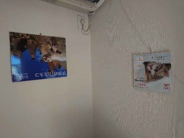 f:id:kiha-gojusan-hyakusan:20210101201600j:image