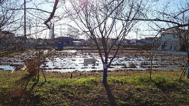 f:id:kiha-gojusan-hyakusan:20210101212935j:image
