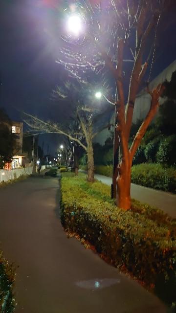f:id:kiha-gojusan-hyakusan:20210103222724j:image