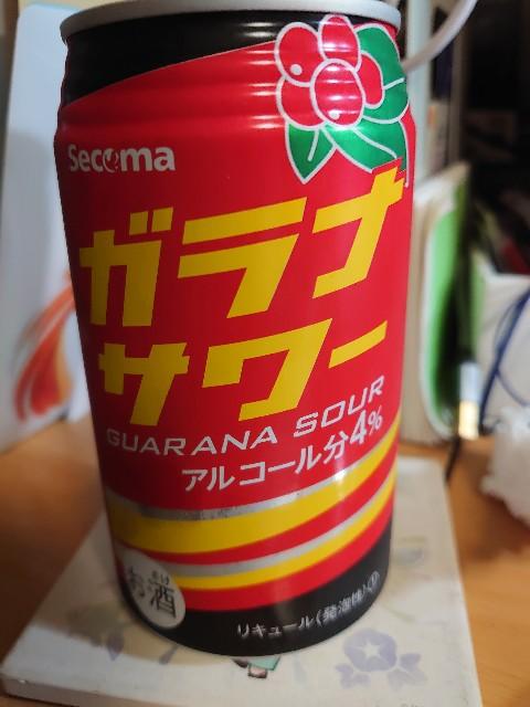 f:id:kiha-gojusan-hyakusan:20210117004448j:image