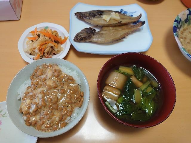 f:id:kiha-gojusan-hyakusan:20210120030434j:image