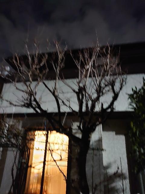f:id:kiha-gojusan-hyakusan:20210127122916j:image