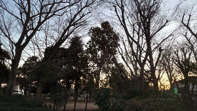 f:id:kiha-gojusan-hyakusan:20210131041821j:image