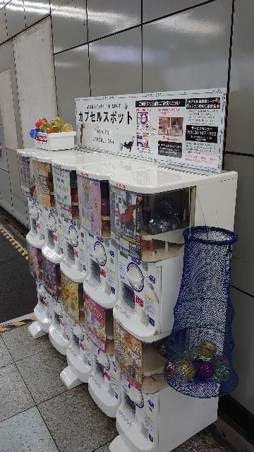 f:id:kiha-gojusan-hyakusan:20210202224450j:image