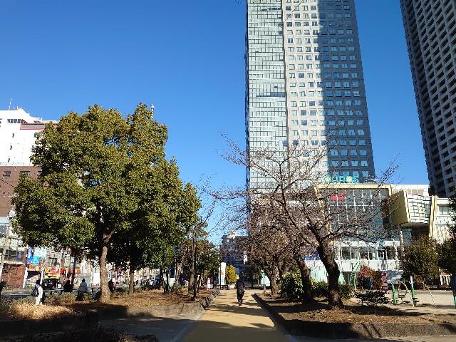 f:id:kiha-gojusan-hyakusan:20210206023849j:image
