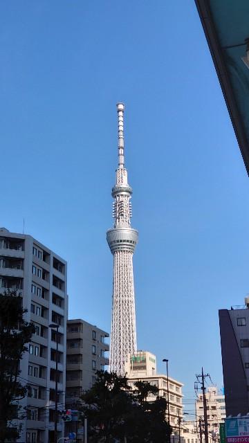 f:id:kiha-gojusan-hyakusan:20210210222035j:image