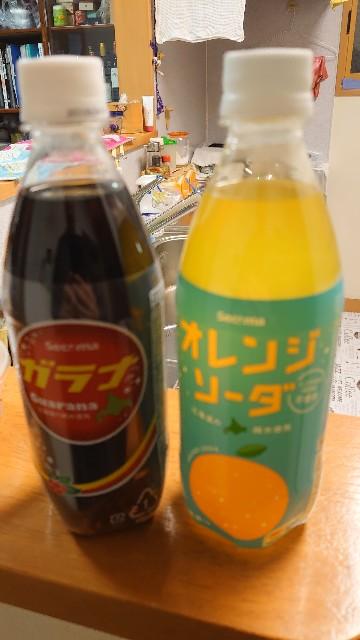 f:id:kiha-gojusan-hyakusan:20210214013120j:image