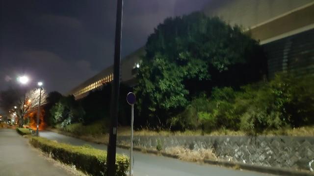 f:id:kiha-gojusan-hyakusan:20210214213325j:image