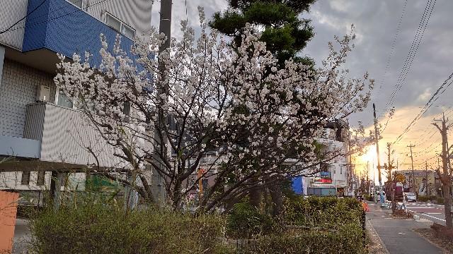 f:id:kiha-gojusan-hyakusan:20210307184350j:image