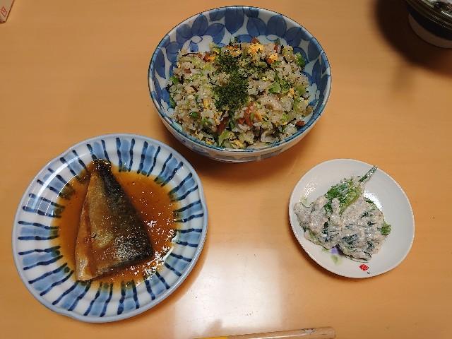 f:id:kiha-gojusan-hyakusan:20210309002338j:image
