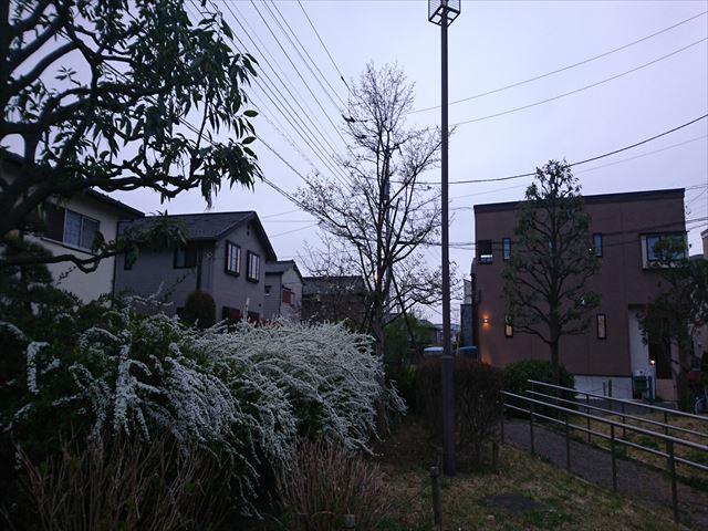 f:id:kiha-gojusan-hyakusan:20210313154517j:plain