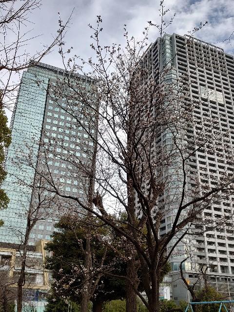f:id:kiha-gojusan-hyakusan:20210316200119j:image