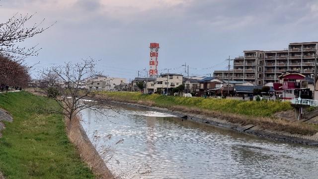 f:id:kiha-gojusan-hyakusan:20210321032120j:image