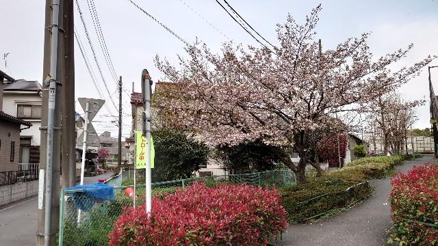f:id:kiha-gojusan-hyakusan:20210330012837j:image