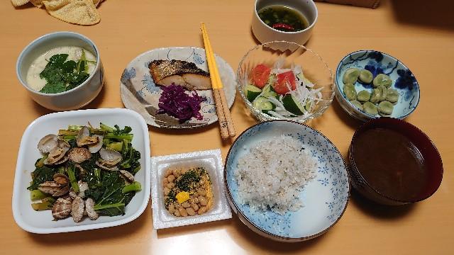 f:id:kiha-gojusan-hyakusan:20210330213723j:image